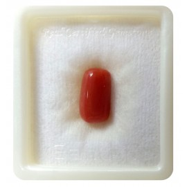 Coral Gemstone Std 3.6 CT (6 Ratti)